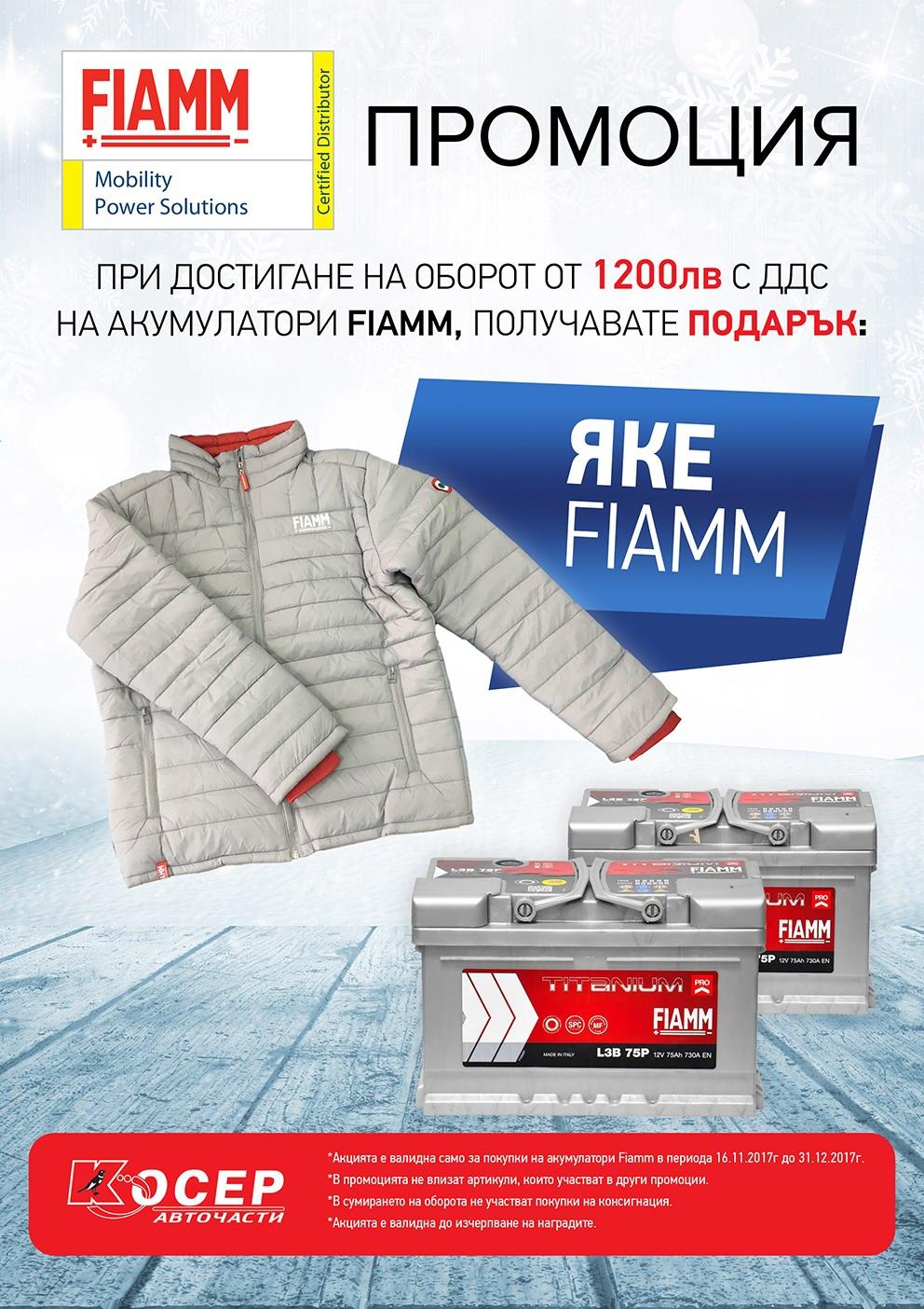 Промоция FIAMM, ноември - декември 2017